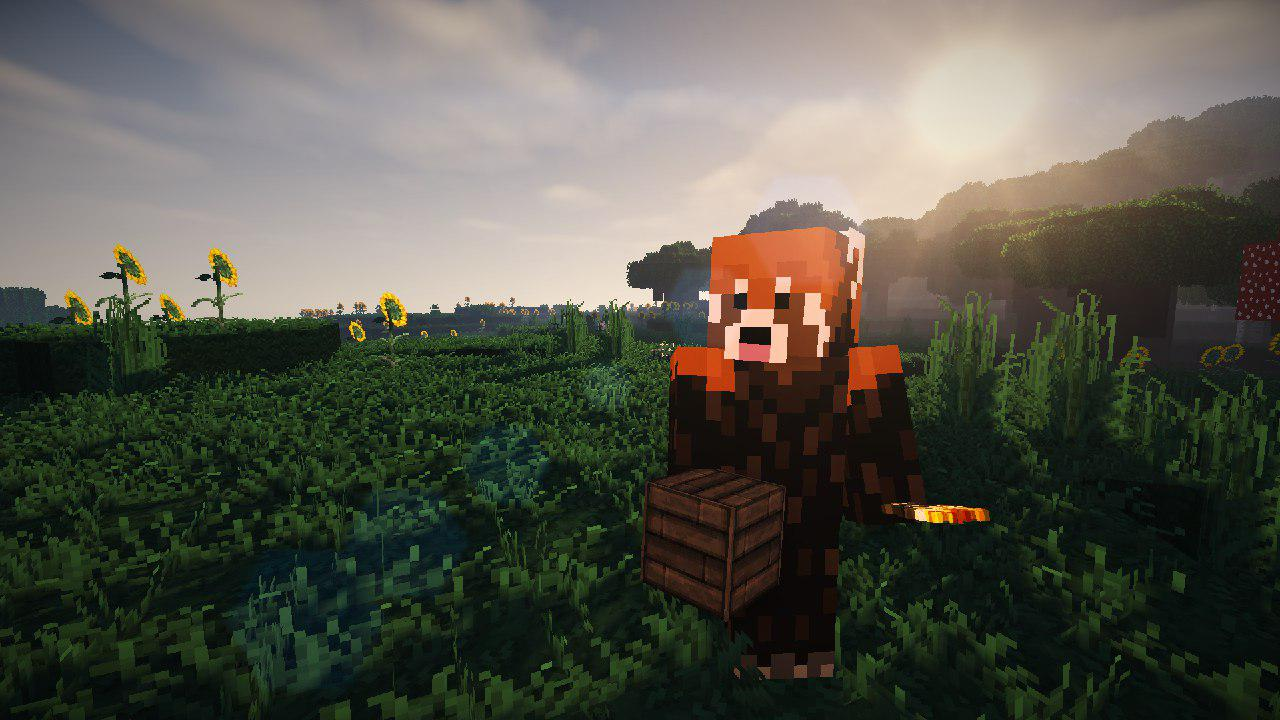 Screenshot of Minecraft Player looking into the camera